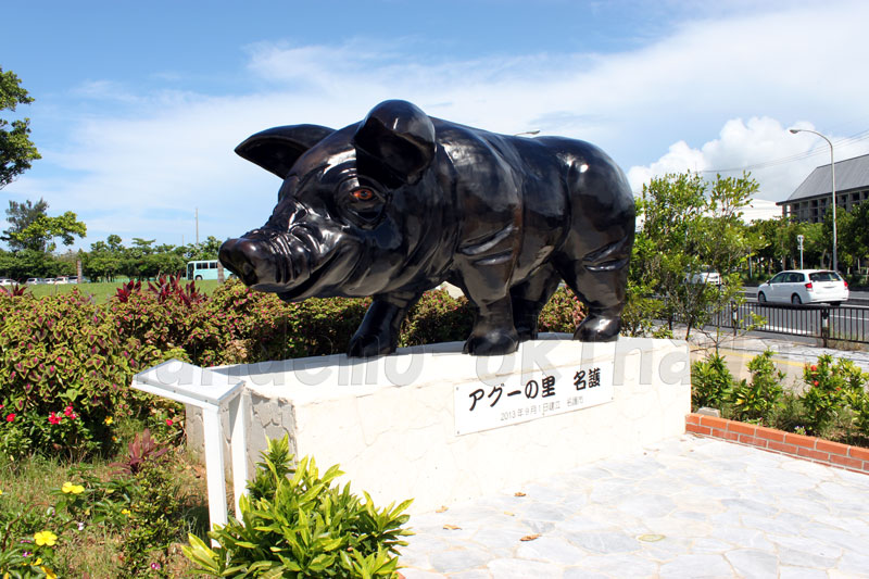 Okinawa Aguu statue outside of Nago city hall