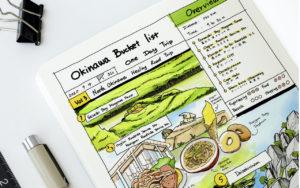Okinawa Bucket List Day Trip Vol 2